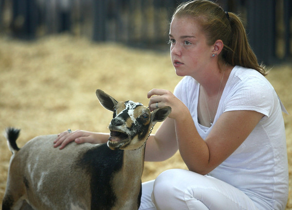 7-9-12<br /> Goat judging at Howard County Fairgrounds<br /> Ashley Hawkins sits with her goat Juliet during the goat judging on Monday at the Howard County Fair.<br /> KT photo | Kelly Lafferty