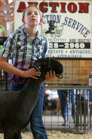 7-12-12<br /> 4H auction at Howard County Fair<br /> Lexy Robinson watches people bid on her sheep during the 4-H auction at the fair on Thursday.<br /> KT photo | Kelly Lafferty