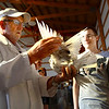 7-10-12<br /> Howard County Fair<br /> Curt Campbell from Wabash judging the pigeon contest with Eric Mehlig watching his Russian Tumbler being looked over.<br /> KT photo | Tim Bath