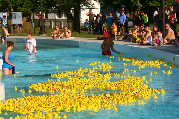 7-17-14<br /> Duck Derby<br /> The ducks float their way down the the lazy river at Kokomo Beach during the Duck Derby on Thursday.<br /> Kelly Lafferty | Kokomo Tribune