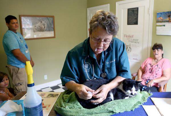 Animal Wellness Clinic