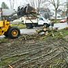 Tree Down Superior
