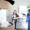 Scratching Post Cat Rescue