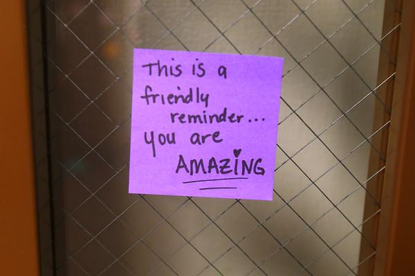 Post-it notes at Pettit Park