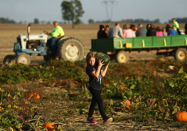 Kendall Family Farm