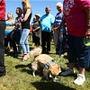 Kokomo Humane Society groundbreaking