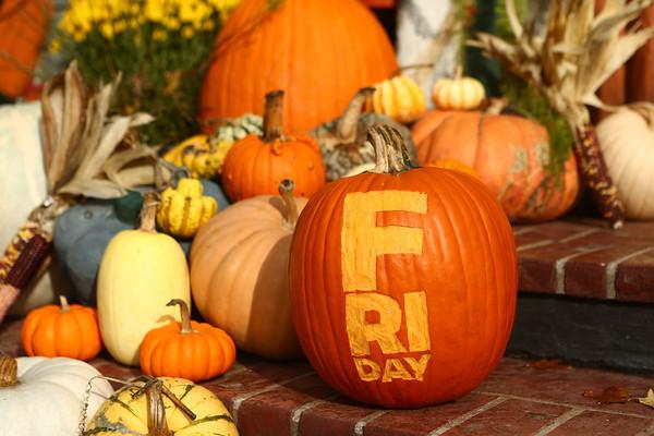 Cover image shot at Price's Pumpkin Patch.<br /> Kelly Lafferty Gerber | Kokomo Tribune