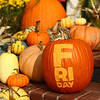 Cover image shot at Price's Pumpkin Patch.<br /> Kelly Lafferty Gerber | Kokomo Tribune