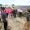 Solar Park Field Trip