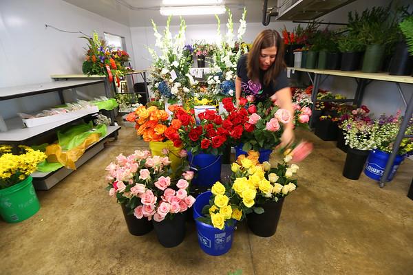 Dwindling Flowers
