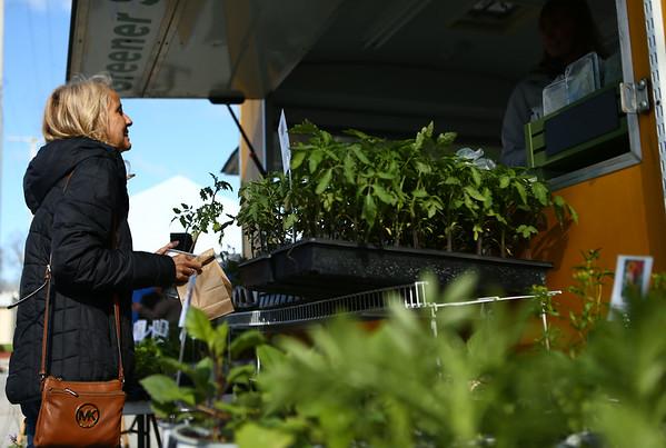 Suzy Wells shops at Greener Side Gardens during Kokomo's Farmers Market opening day on Saturday, April 28, 2018.<br /> Kelly Lafferty Gerber | Kokomo Tribune