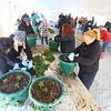 Flower Basket Planting
