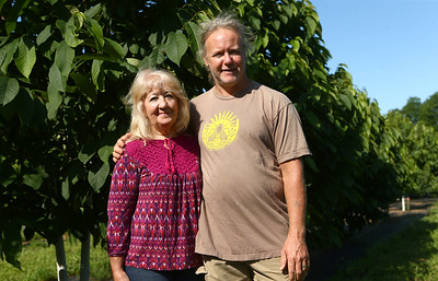 Joan and Bob Johnson have transformed their land into an all-natural, organic farm called Nektar Flow Farms. The land, which used to be a corn field, is now covered in native plants, flowers, herbs, and bees, to name a few. A large part of their land is devoted to pawpaw trees, which are the trees behind them. Kelly Lafferty Gerber | Kokomo Tribune
