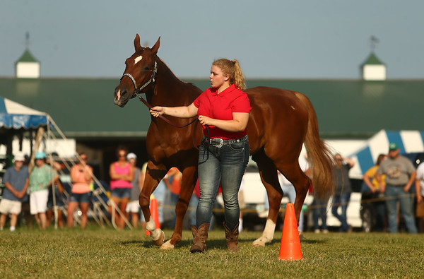 Supreme Showman Megan Hawkins shows a horse during the competition at the Howard County 4-H Fair on Wednesday, July 11, 2018. Kelly Lafferty Gerber | Kokomo Tribune