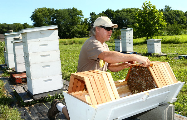 Bob Johnson check one of his honeybee hives to make sure there are no issues at Nektar Flow Farms on July 6, 2018.<br /> Kelly Lafferty Gerber | Kokomo Tribune