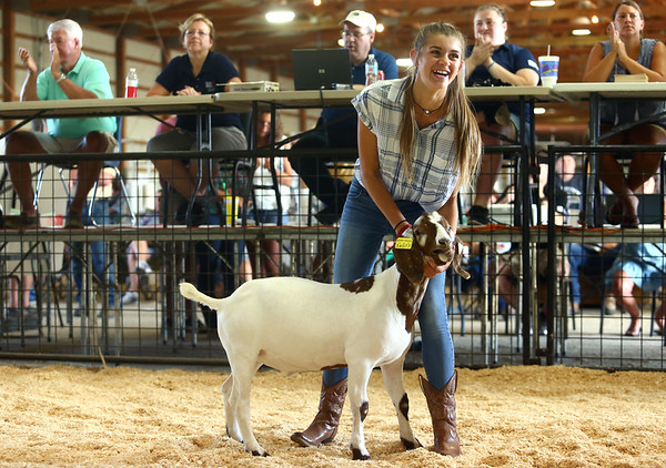 Amelia Habig shows her goat during the Livestock Auction at the Howard County 4-H Fair on Thursday, July 12, 2018.<br /> Kelly Lafferty Gerber | Kokomo Tribune