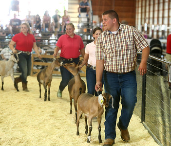 Supreme Showman at the Howard County 4-H Fair on Wednesday, July 11, 2018. Kelly Lafferty Gerber | Kokomo Tribune