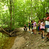 Day campers search for animal tracks during the Super Explorers day camp at Jackson Morrow Park on Monday, July 16, 2018.<br /> Kelly Lafferty Gerber | Kokomo Tribune