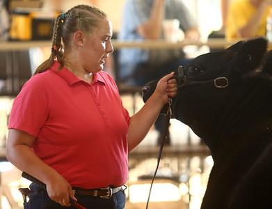 Supreme Showman at the Howard County 4-H Fair on Wednesday, July 11, 2018. Kelly Lafferty Gerber | Kokomo Tribune