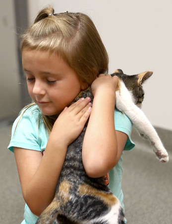 Harper Roach, 6, gives her new kitten, Izzy, a hug in the adoption interaction room at the new location of the Kokomo Humane Society, 729 East Hoffer Street, on July 19, 2018.<br /> Kelly Lafferty Gerber | Kokomo Tribune