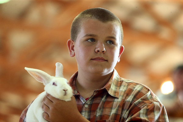Trenton Hendrix shows his rabbit during the Livestock Auction at the Howard County 4-H Fair on Thursday, July 12, 2018.<br /> Kelly Lafferty Gerber | Kokomo Tribune