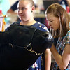 Audrey Wyrick talks to her steer during the Livestock Auction at the Howard County 4-H Fair on Thursday, July 12, 2018.<br /> Kelly Lafferty Gerber | Kokomo Tribune