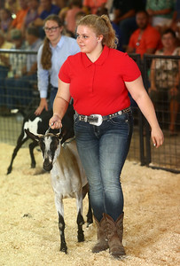 Megan Hawkins shows a goat during the Supreme Showman competition at the Howard County 4-H Fair on Wednesday, July 11, 2018. Hawkins was later named Supreme Showman. Kelly Lafferty Gerber | Kokomo Tribune