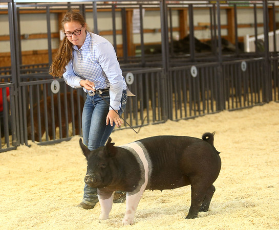 Supreme Showman at the Howard County 4-H Fair on Wednesday, July 11, 2018.<br /> Kelly Lafferty Gerber | Kokomo Tribune