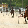 Horses and riders head for the finish line during harness racing at the Converse Fair on Thursday, June 7, 2018.<br /> Kelly Lafferty Gerber | Kokomo Tribune