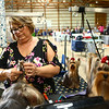 Sherri Spieth from Fort Wayne works on the fur of her three Yorkshire Terriers from left: Big, Cosmo, and Chase, during the Kokomo Kennel Club dog show on Saturday, May 19, 2018.<br /> Kelly Lafferty Gerber | Kokomo Tribune