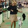 Kokomo Kennel Club dog show on Saturday, May 19, 2018.<br /> Kelly Lafferty Gerber | Kokomo Tribune