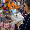 Maconaquah Elementary students gathered to watch their principal Kelly McPike and the middle school principal Craig Jernagan kiss a pig on May 30, 2018 held by Alexandra Merritt. The event was a fundraiser that brought in $1100 to help a family who's father is in the hospital with a brain tumor. McPike doned a haz mat suite but did take the mask off for another kiss. <br /> Tim Bath | Kokomo Tribune