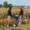 4-year-old Jackson Robinson picks out a pumpkin as he and his parents Lee and Aisha explore the Kendall Family Farm Adventures pumpkin patch on Saturday, October 20, 2018.<br /> Kelly Lafferty Gerber | Kokomo Tribune