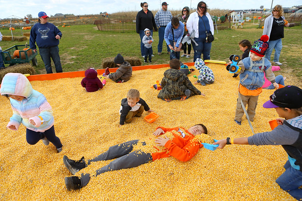 10-year-old Landen Bratton, center, tries to cover himself in corn as he and other kids play in the corn box at Kendall Family Farm Adventures on Saturday, October 20, 2018.<br /> Kelly Lafferty Gerber | Kokomo Tribune