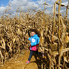 JoHannah Carter, 6, runs through the Kendall Family Farm Adventures corn maze on Saturday, October 20, 2018.<br /> Kelly Lafferty Gerber | Kokomo Tribune