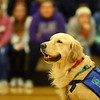 Rocky, Northwestern Middle School's new facility dog, is introduced to the school on Friday, December 13, 2019.<br /> Kelly Lafferty Gerber | Kokomo Tribune