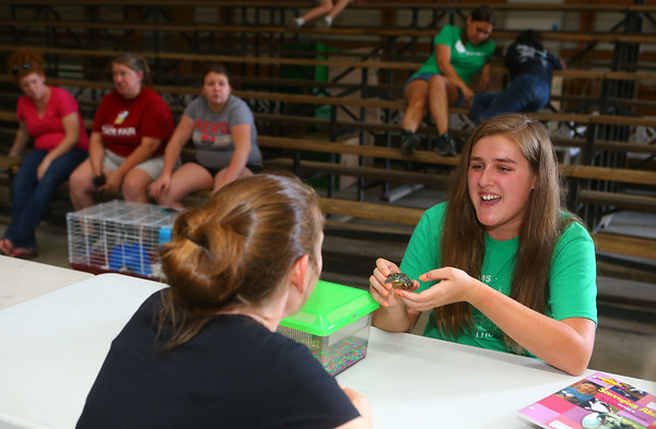 Kelsie Avery, 13, shows judge Renell Finke her turtle named Denny during the small animal show, on Tuesday, July 2, 2019. The small animal show was one of the Howard County 4-H Fair's pre-fair activities.<br /> Kelly Lafferty Gerber   Kokomo Tribune