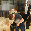Charles Rosales rests his head on his alpaca, Rhiannon, to coax Rhiannon to walk forward during the Llama and Alpaca show at the Howard County 4-H Fair on Tuesday, July 9, 2019.<br /> Kelly Lafferty Gerber | Kokomo Tribune