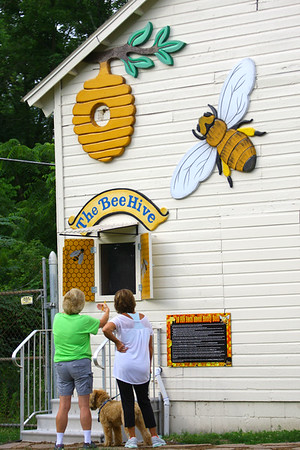 The Bee hive is located at Mehlig Park at the corner of Carter and Westmoreland on July 3, 2019. The hive was discovered in the wall of the building and instead of removing it the city parks department had a hole cut and glass placed over it so people could view the bees making their hive. Kokomo Parks and Recreation employee Debbie Green talks to Patty Walker about the viewing window.<br /> Tim Bath   Kokomo Tribune