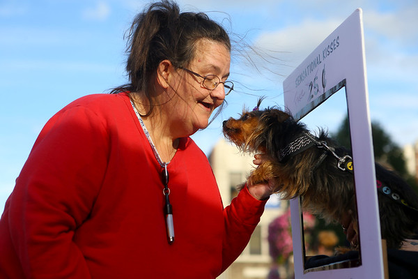 Theresa Johnson leans in for a puppy kiss from Bella, who was giving out free kisses in ABATE of Indiana's kissing booth during First Friday, Oct. 4, 2019.<br /> Kelly Lafferty Gerber | Kokomo Tribune