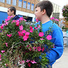 Students from Bon Air Middle School clean up annual flowers in the downtown flower beds on Oct. 25, 2019. The school is part of the Transition Zone program that has to go longer hours and more days. The kids are spending some of that time to give back to the community. Austin Jewell and Jaxon Myers pulled some of the big clumps.<br /> Tim Bath | Kokomo Tribune