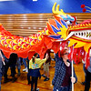 Kokomo High School student learn about culture and dance from around the world at the Culture Festival on Oct. 7, 2019. Katie Gilbody takes the head of the dragon that is chasing the pearl through the gym.<br /> Tim Bath | Kokomo Tribune