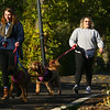 Barktoberfest in Foster Park on Saturday, October 12, 2019.<br /> Kelly Lafferty Gerber | Kokomo Tribune