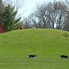 People took advantage of the sunny 60 degree weather at Jackson Morrow Park on Thursday, April 2, 2020.<br /> Kelly Lafferty Gerber   Kokomo Tribune