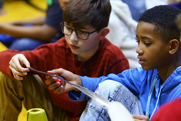 Elwood Haynes Elementary students were treated to birds of prey from the American Eagle Foundation thanks to a grant by Duke Energy on January 28, 2020. Ian Lane and Aveon Rice get to hold and feel bald eagle feathers.<br /> Tim Bath | Kokomo Tribune