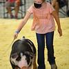 Addyson Eads - <br /> Showing swine in the Howard County 4-H Fair on July 17, 2020.<br /> Tim Bath | Kokomo Tribune