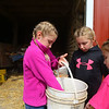 Hunt Sisters Egg Farm's sisters check out the eggs they've gathered on October 3, 2020.<br /> Kelly Lafferty Gerber | Kokomo Tribune