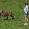 7-14-21<br /> Cousin Moriah Schwartz and daughter Anne-Marie Schwartz with the donkey at Blue Barn Farms run by Stephanie Schwartz and family.<br /> Tim Bath   Kokomo Tribune