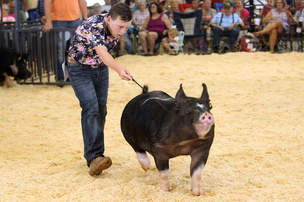 7-14-21<br /> Rhyker Mauck guiding his pig at the Howard County Fair Wednesday.<br /> Tim Bath | Kokomo Tribune