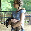 7-14-21<br /> Cousin Moriah Schwartz holding a goat at Blue Barn Farms run by Stephanie Schwartz and family.<br /> Tim Bath   Kokomo Tribune